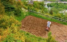 Como plantar un huerto en 40 segundos