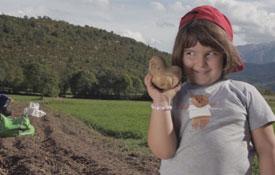 la patata de Chia